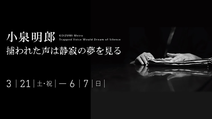 「小泉明郎 捕われた声は静寂の夢を見る」 CURATORS TV