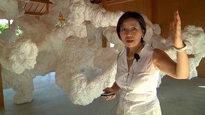 犬島「家プロジェクト」2013 CURATORS TV