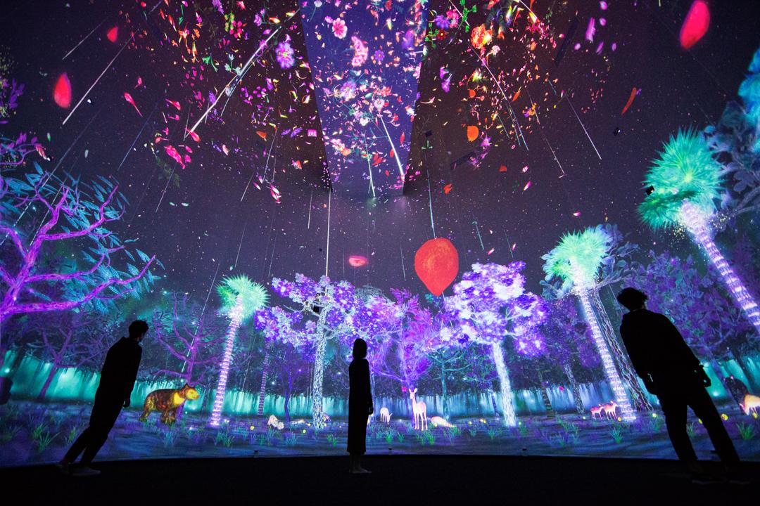 チームラボ「Story of the Forest」シンガポール国立博物館常設展示。 新しい芸術体験を最高のテクノロジーと共に。