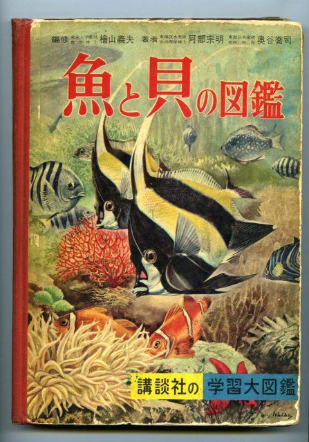 森村少年の愛読書『魚と貝の図鑑』講談社