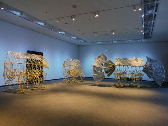 展示室は海をイメージしたブルーライトで涼しげ!