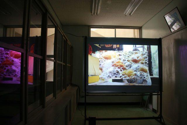 キュンチョメ《完璧なドーナツをつくる(仮)》の展示風景