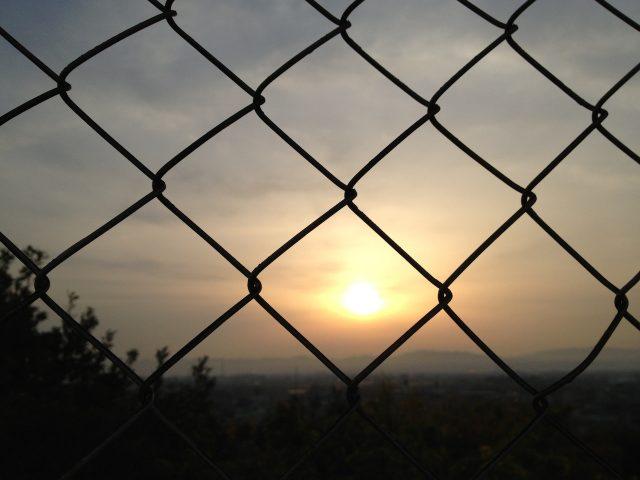 sunset-net01