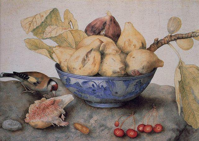イチジクは「羞恥」の象徴?エデンの園の甘美な果実